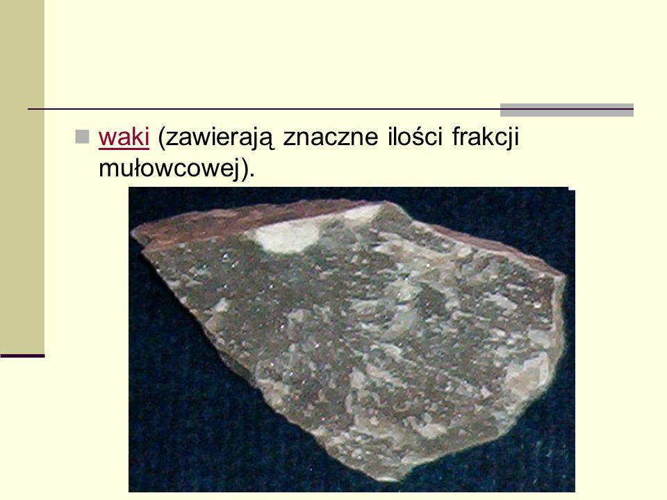 waki (zawierają znaczne ilości frakcji mułowcowej). waki