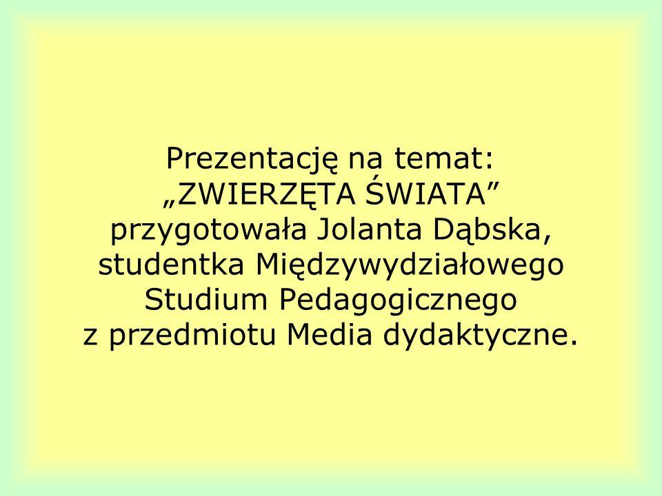 Prezentację na temat: ZWIERZĘTA ŚWIATA przygotowała Jolanta Dąbska, studentka Międzywydziałowego Studium Pedagogicznego z przedmiotu Media dydaktyczne
