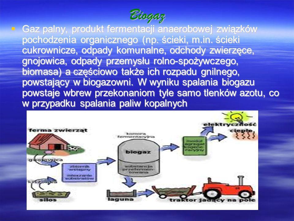 Biogaz Gaz palny, produkt fermentacji anaerobowej związków pochodzenia organicznego (np. ścieki, m.in. ścieki cukrownicze, odpady komunalne, odchody z