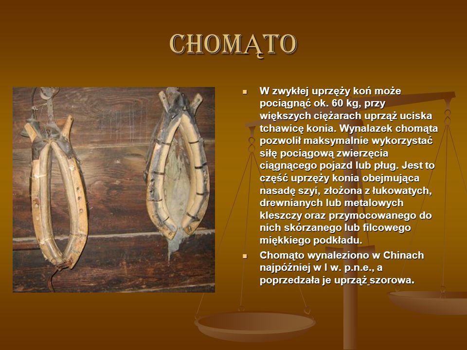 PROCH Jednym z najważniejszych chińskich wynalazków jest proch strzelniczy zwany też prochem dymnym lub czarnym. Był on pierwszym wytwarzanym przez cz