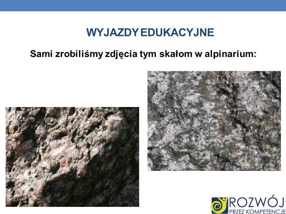 WYJAZDY EDUKACYJNE Sami zrobiliśmy zdjęcia tym skałom w alpinarium: