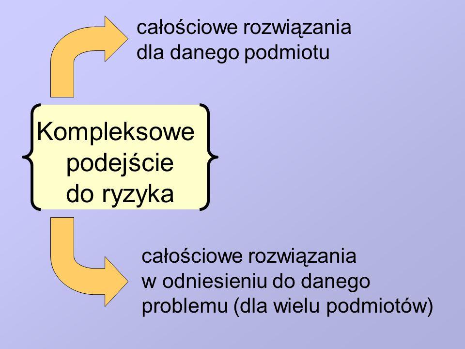 Kompleksowe podejście do ryzyka całościowe rozwiązania dla danego podmiotu całościowe rozwiązania w odniesieniu do danego problemu (dla wielu podmiotó