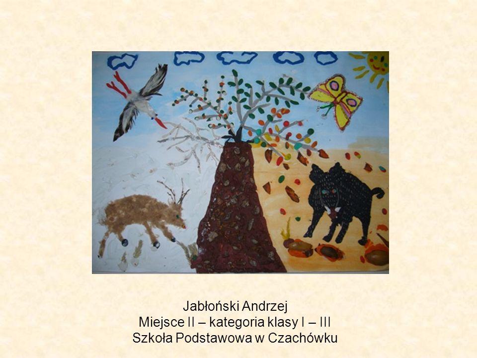 Jabłoński Andrzej Miejsce II – kategoria klasy I – III Szkoła Podstawowa w Czachówku
