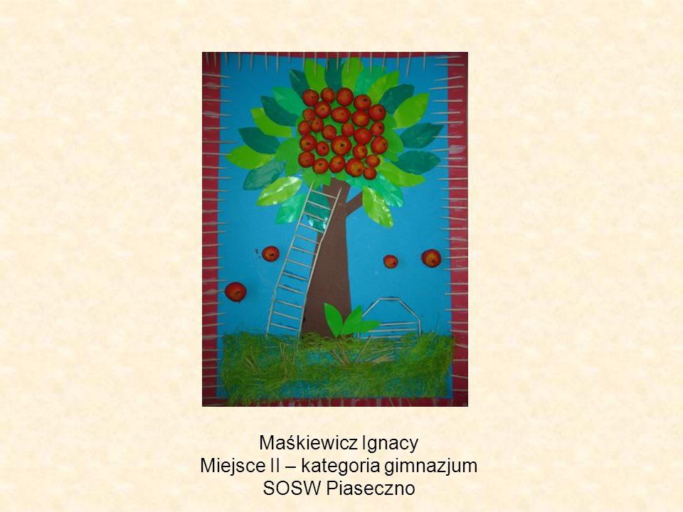 Maśkiewicz Ignacy Miejsce II – kategoria gimnazjum SOSW Piaseczno