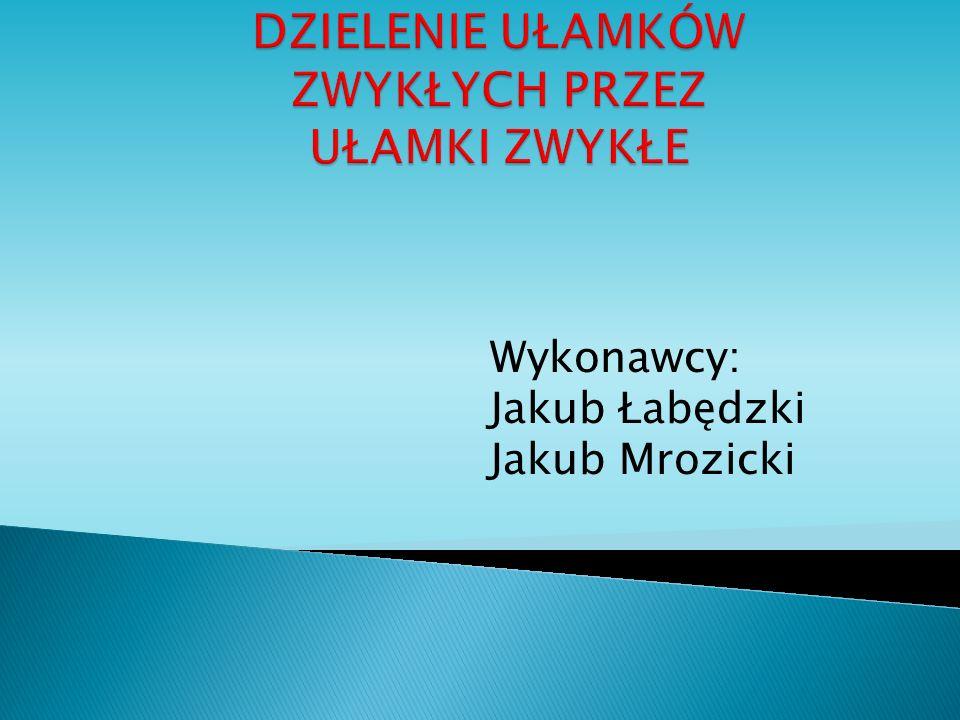 Wykonawcy: Jakub Łabędzki Jakub Mrozicki