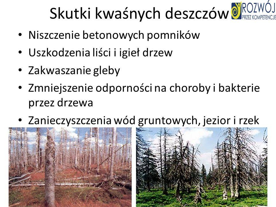 Skutki kwaśnych deszczów Niszczenie betonowych pomników Uszkodzenia liści i igieł drzew Zakwaszanie gleby Zmniejszenie odporności na choroby i bakteri