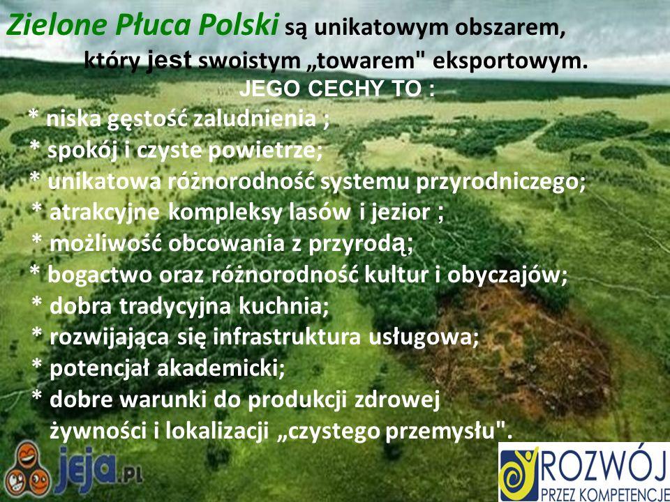 Zielone Płuca Polski są unikatowym obszarem, który jest swoistym towarem