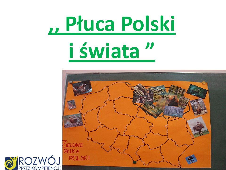 ,, Płuca Polski i świata