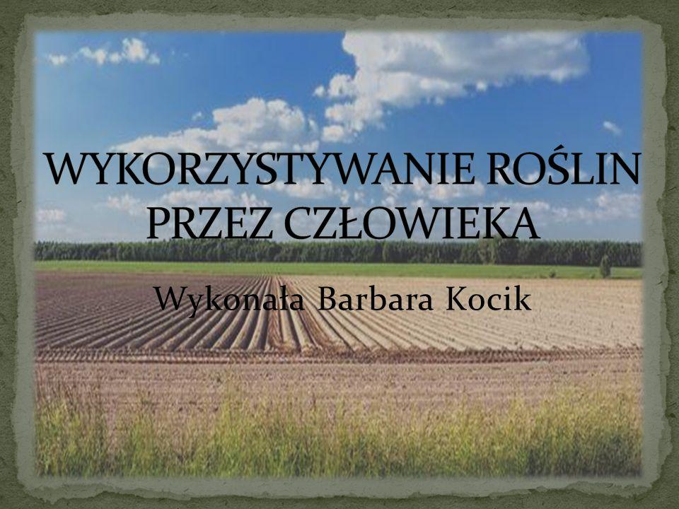 Wykonała Barbara Kocik