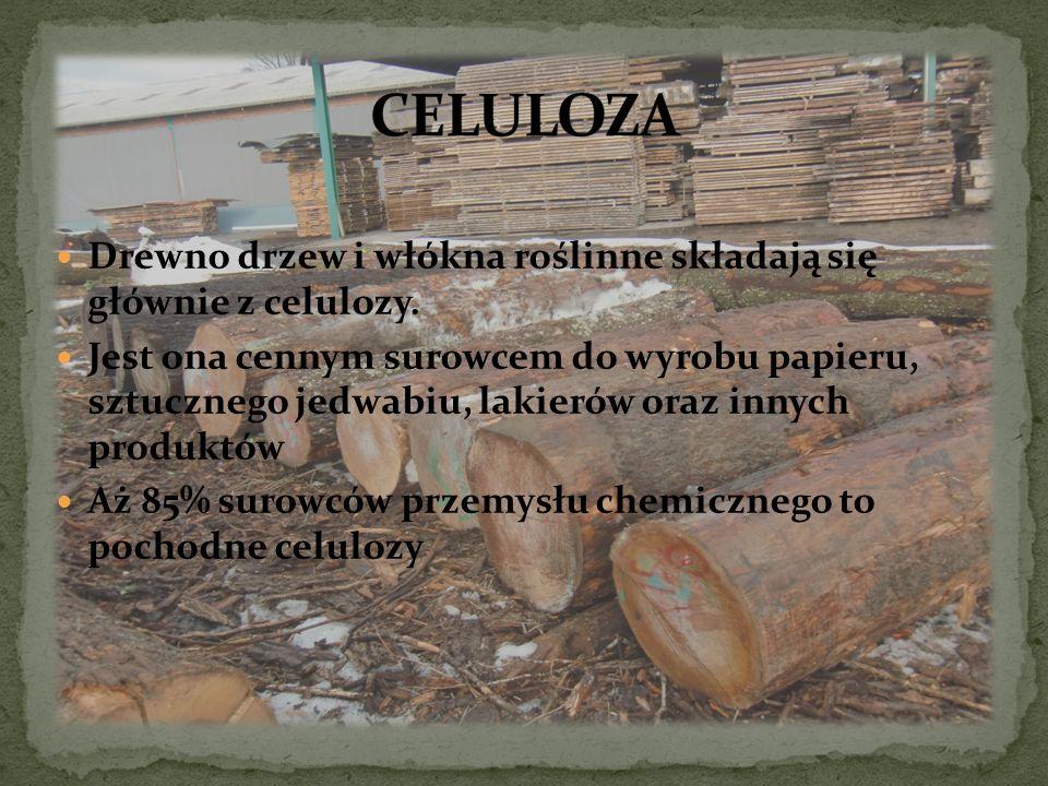 Drewno drzew i włókna roślinne składają się głównie z celulozy. Jest ona cennym surowcem do wyrobu papieru, sztucznego jedwabiu, lakierów oraz innych