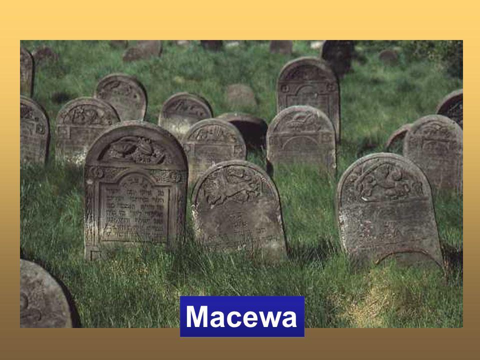 Macewa