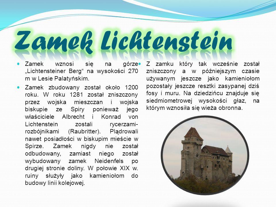 Zamek wznosi się na górze Lichtensteiner Berg na wysokości 270 m w Lesie Palatyńskim. Zamek zbudowany został około 1200 roku. W roku 1281 został znisz