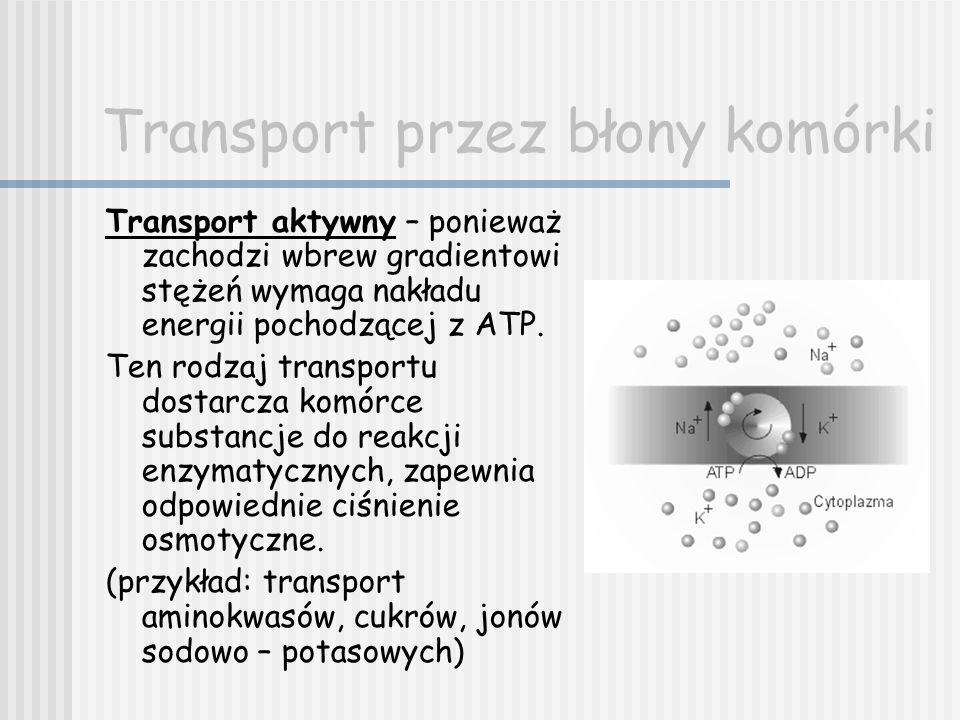 Transport przez błony komórki Transport aktywny – ponieważ zachodzi wbrew gradientowi stężeń wymaga nakładu energii pochodzącej z ATP. Ten rodzaj tran