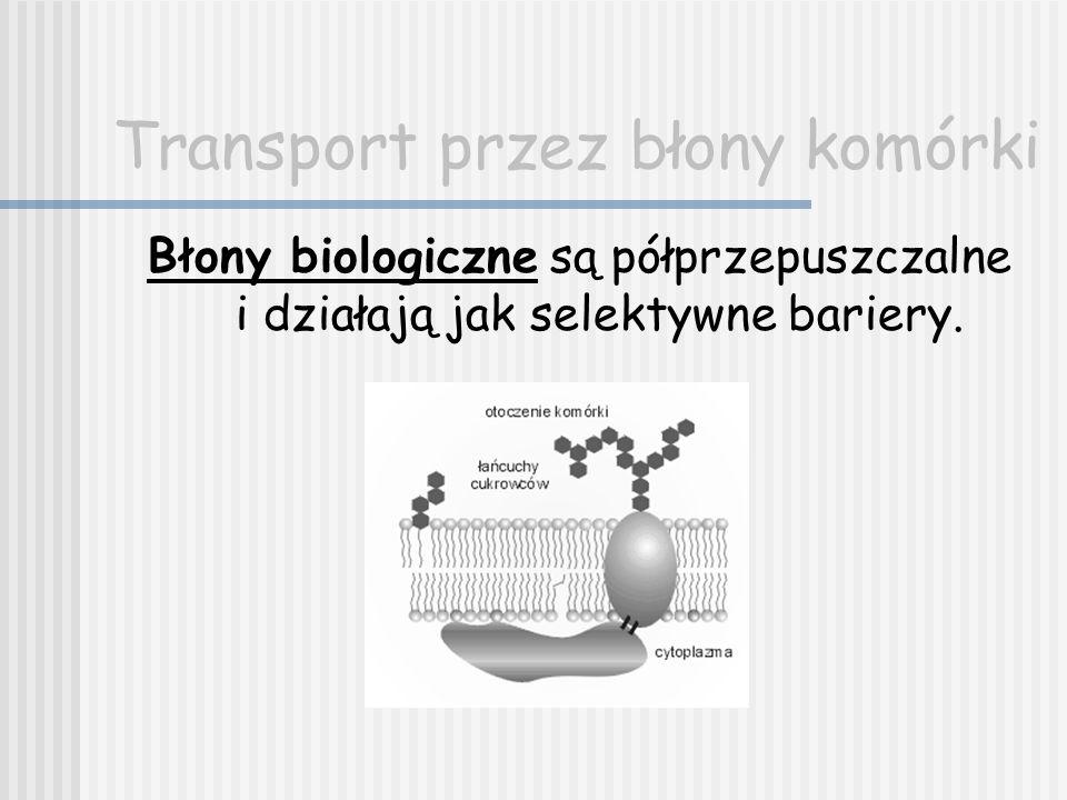 Transport przez błony komórki Błony biologiczne są odpowiedzialne za: Bierny i czynny transport jonów i substancji niejonowych, Pobieranie przez komórkę np.