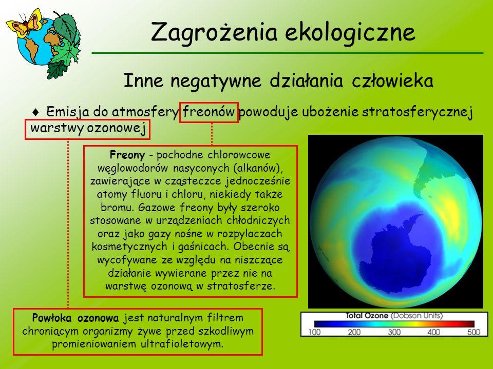 Zagrożenia ekologiczne Inne negatywne działania człowieka Emisja do atmosfery freonów powoduje ubożenie stratosferycznej warstwy ozonowej Freony - poc