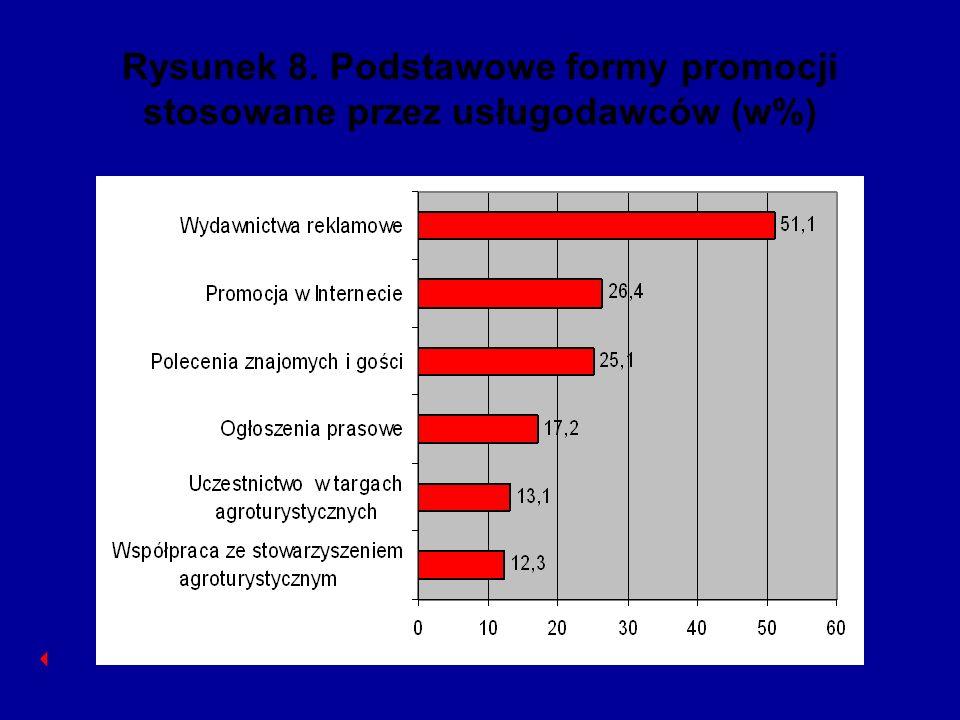 Rysunek 8. Podstawowe formy promocji stosowane przez usługodawców (w%)