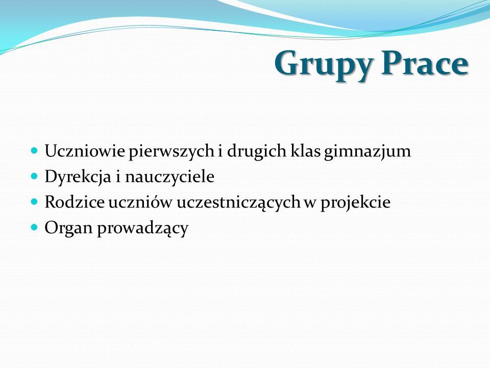 Grupy Prace Uczniowie pierwszych i drugich klas gimnazjum Dyrekcja i nauczyciele Rodzice uczniów uczestniczących w projekcie Organ prowadzący