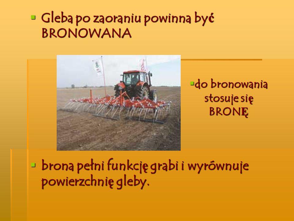 Gleba po zaoraniu powinna być BRONOWANA brona pełni funkcję grabi i wyrównuje powierzchnię gleby. do bronowania stosuje się BRONĘ