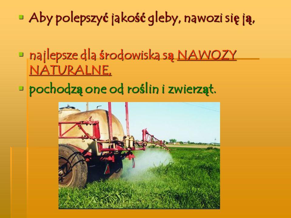 Aby polepszyć jakość gleby, nawozi się ją, najlepsze dla środowiska są NAWOZY NATURALNE, pochodzą one od roślin i zwierząt.