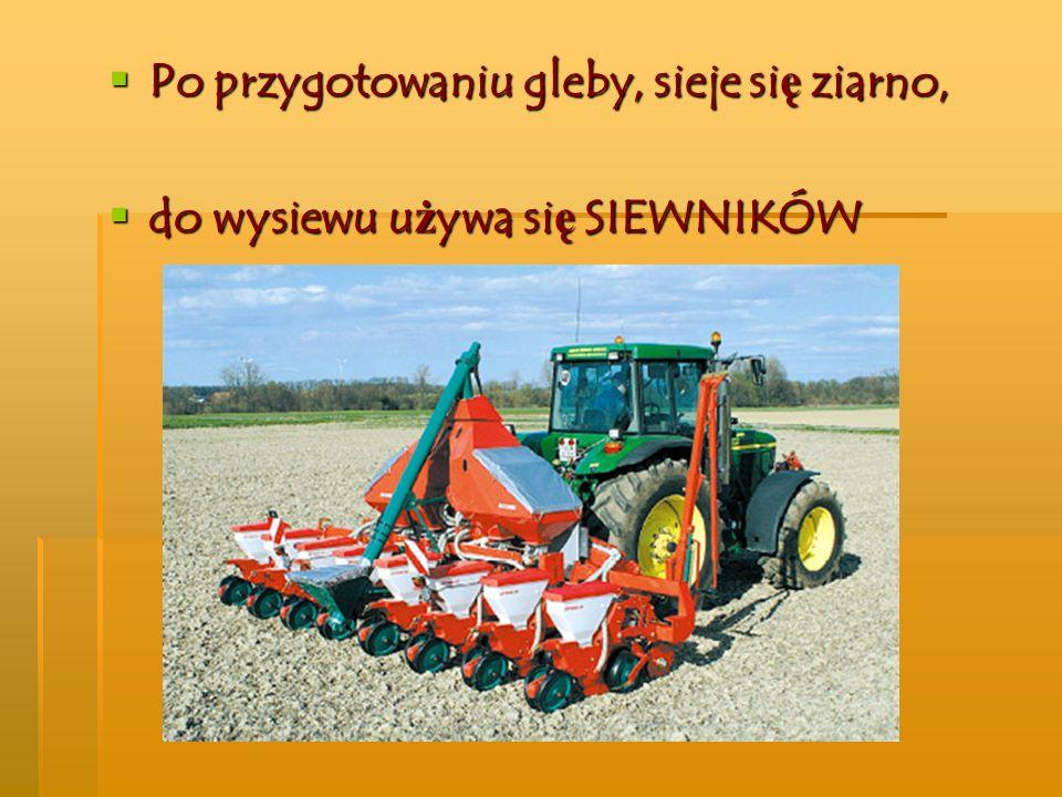 Po przygotowaniu gleby, sieje się ziarno, do wysiewu używa się SIEWNIKÓW