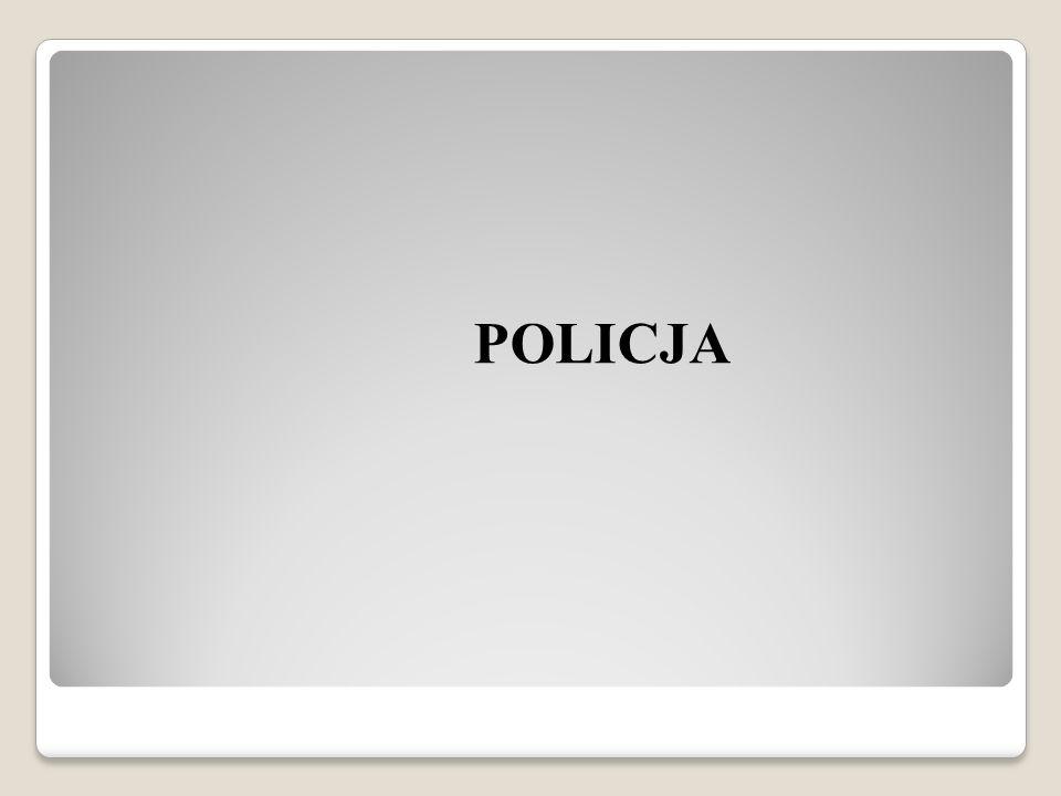 KSZTAŁTOWANIE BEZPIECZEŃSTWA I PORZĄDKU PUBLICZNEGO W ŚRODOWISKU LOKALNYM Organizator – Stowarzyszenie Bezpieczny Konin Honorowy Patronat – Prezydent Miasta Konina Józef Nowicki
