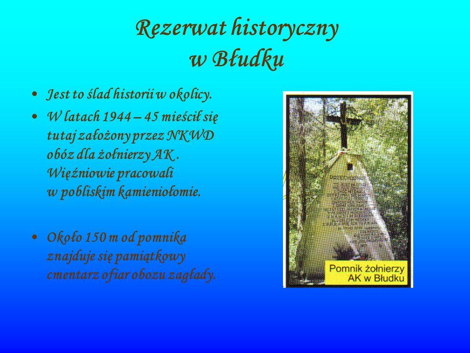 Rezerwat historyczny w Błudku Jest to ślad historii w okolicy. W latach 1944 – 45 mieścił się tutaj założony przez NKWD obóz dla żołnierzy AK. Więźnio