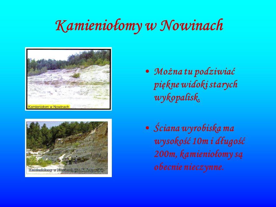 Kamieniołomy w Nowinach Można tu podziwiać piękne widoki starych wykopalisk. Ściana wyrobiska ma wysokość 10m i długość 200m, kamieniołomy są obecnie
