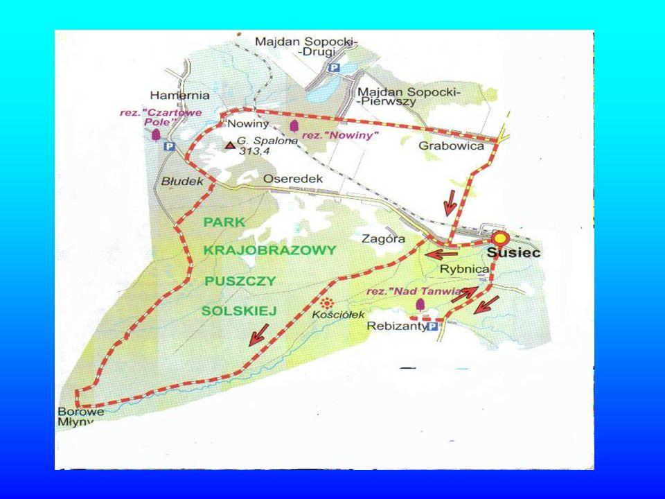Kilka słów o gminie Susiec Tak duża popularność gminy wynika z jej atrakcyjnego położenia na wyżynnym obszarze Roztocza Środkowego, oraz na nizinnym i puszczańskim terenie Równiny Biłgorajskiej.