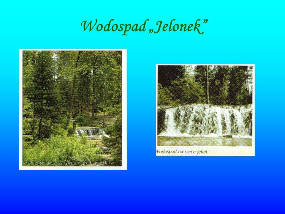 Rezerwat Czartowe Pole Rezerwat ten jest położony malowniczo ukształtowanej dolinie rzeki Sopot z serią dużych wodospadów w okolicy miejscowości Hamernia.