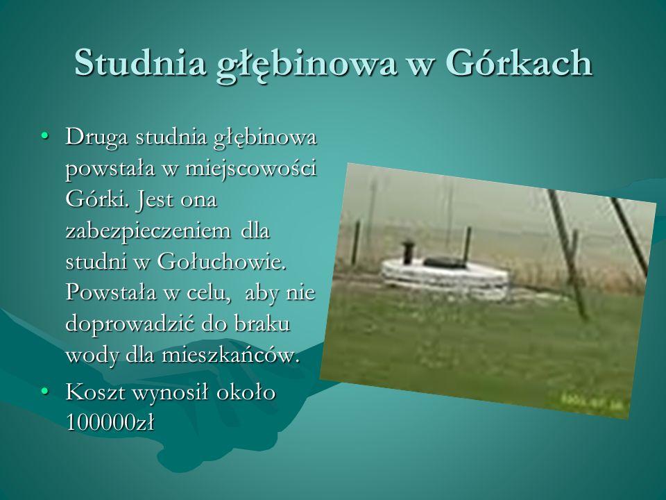 Studnia głębinowa w Górkach Druga studnia głębinowa powstała w miejscowości Górki. Jest ona zabezpieczeniem dla studni w Gołuchowie. Powstała w celu,