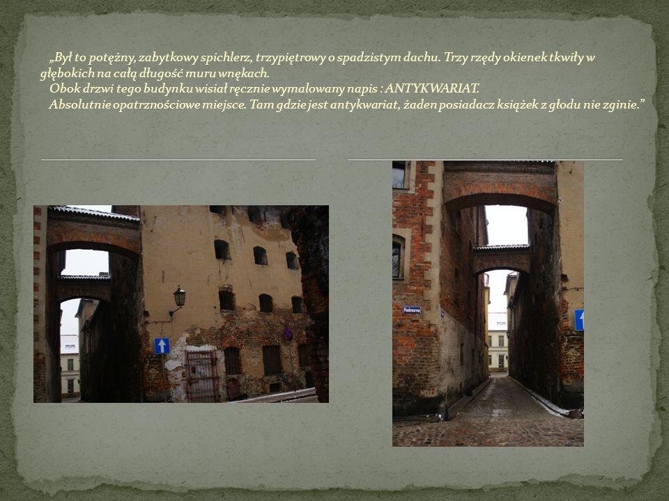 Był to potężny, zabytkowy spichlerz, trzypiętrowy o spadzistym dachu. Trzy rzędy okienek tkwiły w głębokich na całą długość muru wnękach. Obok drzwi t