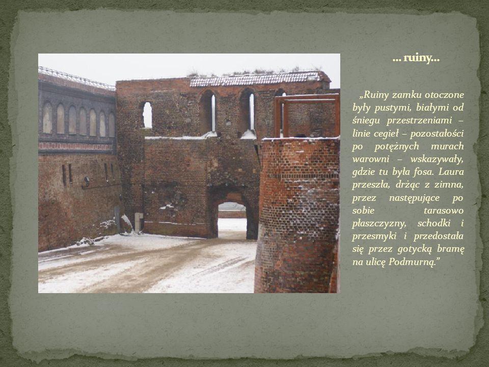 Ruiny zamku otoczone były pustymi, białymi od śniegu przestrzeniami – linie cegieł – pozostałości po potężnych murach warowni – wskazywały, gdzie tu była fosa.