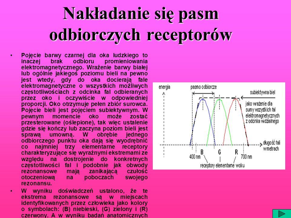 Nakładanie się pasm odbiorczych receptorów Pojęcie barwy czarnej dla oka ludzkiego to inaczej brak odbioru promieniowania elektromagnetycznego. Wrażen