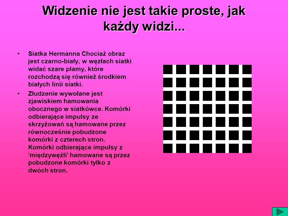 Widzenie nie jest takie proste, jak każdy widzi... Siatka Hermanna Chociaż obraz jest czarno-biały, w węzłach siatki widać szare plamy, które rozchodz