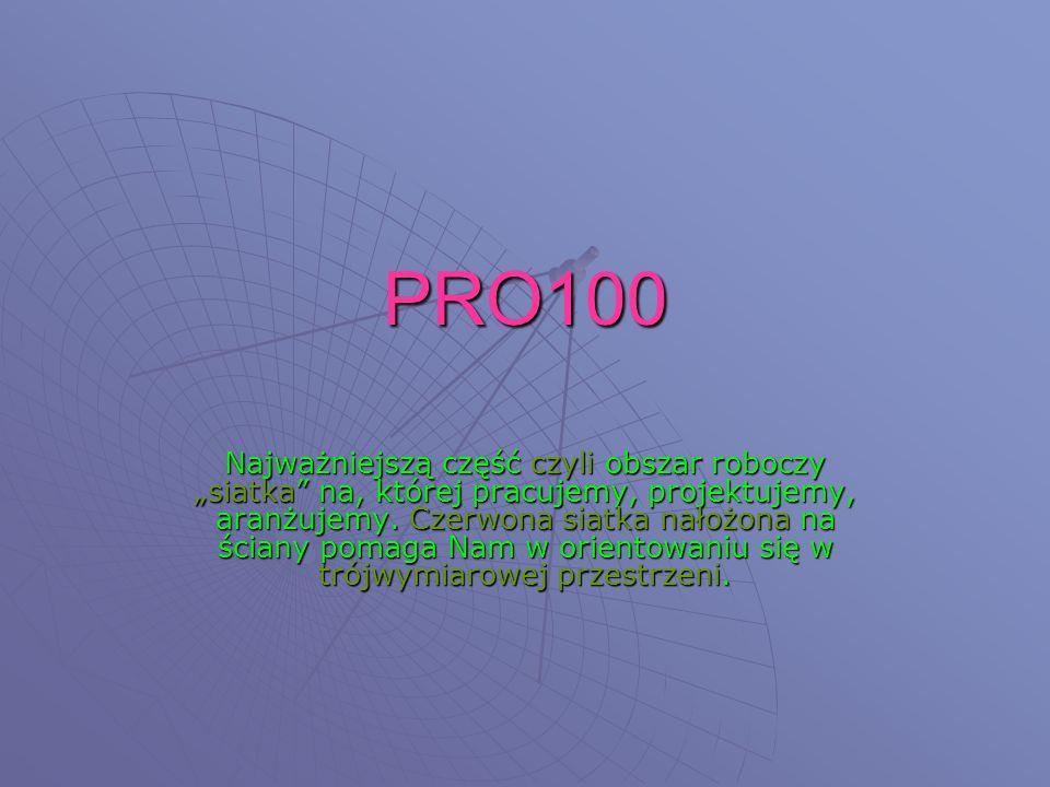 PRO100 Najważniejszą część czyli obszar roboczy siatka na, której pracujemy, projektujemy, aranżujemy.