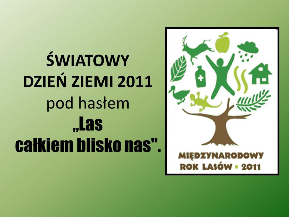 Rok 2011 O N Z ustanowiła Międzynarodowym Rokiem Lasów. Jego główne hasło Lasy dla ludzi