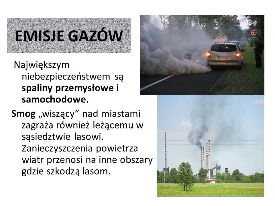 EMISJE GAZÓW Największym niebezpieczeństwem są spaliny przemysłowe i samochodowe.