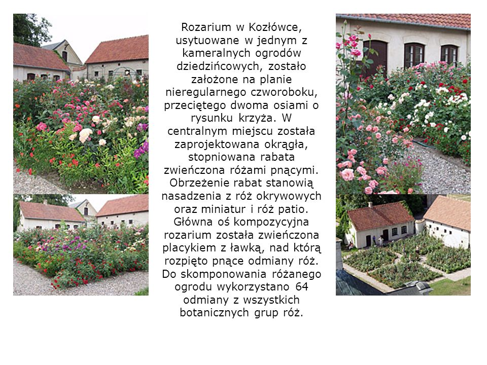 Rozarium w Kozłówce, usytuowane w jednym z kameralnych ogrodów dziedzińcowych, zostało założone na planie nieregularnego czworoboku, przeciętego dwoma