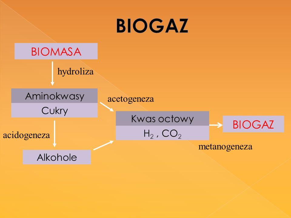 BIOMASA Aminokwasy Cukry Alkohole BIOGAZ Kwas octowy H 2, CO 2 hydroliza acidogeneza acetogeneza metanogeneza