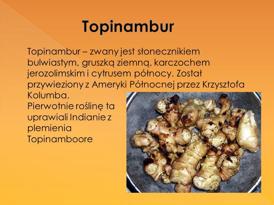 Topinambur – zwany jest słonecznikiem bulwiastym, gruszką ziemną, karczochem jerozolimskim i cytrusem północy. Został przywieziony z Ameryki Północnej