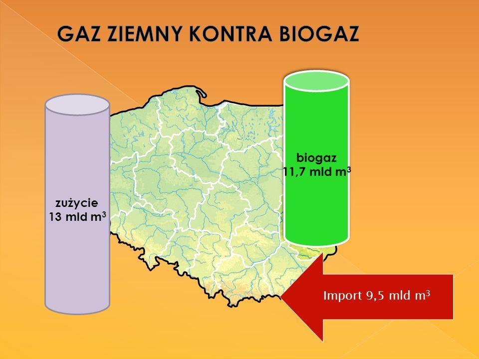 zużycie 13 mld m 3 Import 9,5 mld m 3