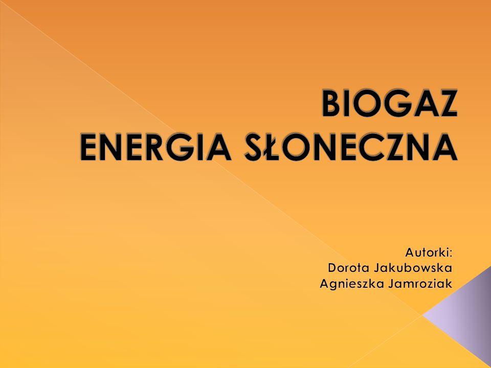 Elektrociepłownia biogazowa, zamiast spalać węgiel w kotle energetycznym, tak jak w technologii wytwarzania energii w konwencjonalnej elektrociepłowni, wykorzystuje procesy biologiczne zachodzące w czasie fermentacji mokrej, jednofazowej.