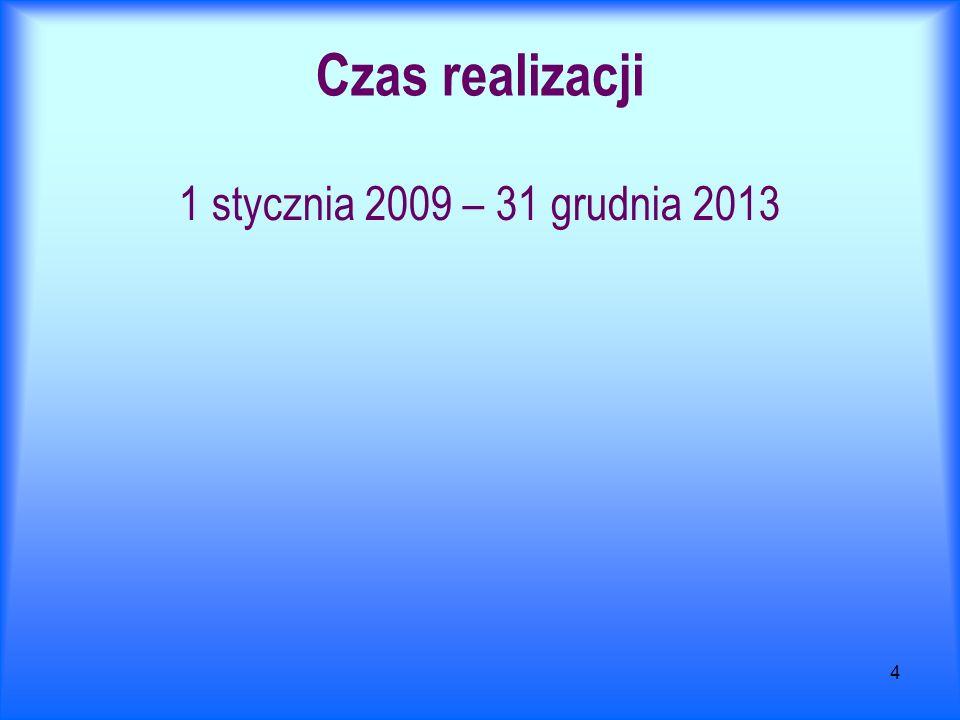 4 Czas realizacji 1 stycznia 2009 – 31 grudnia 2013