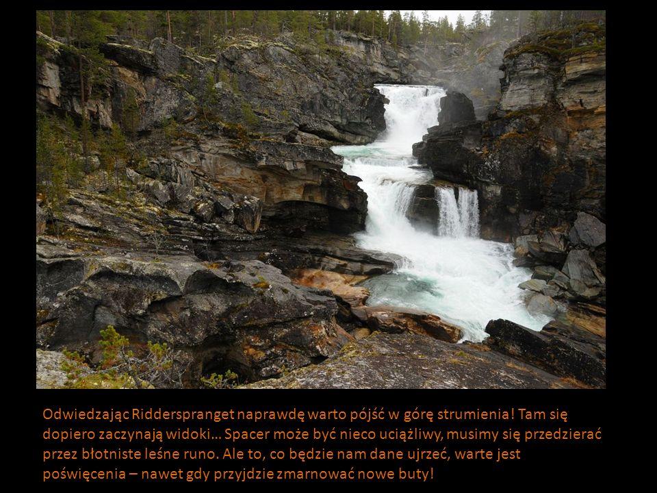 Odwiedzając Ridderspranget naprawdę warto pójść w górę strumienia! Tam się dopiero zaczynają widoki… Spacer może być nieco uciążliwy, musimy się przed