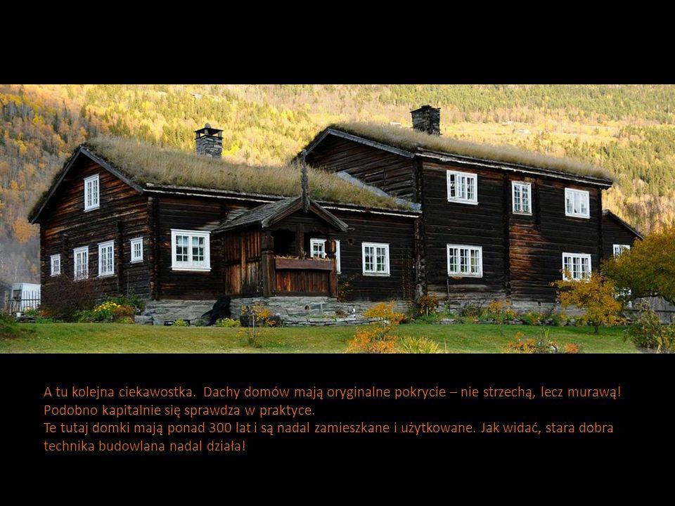 A tu kolejna ciekawostka. Dachy domów mają oryginalne pokrycie – nie strzechą, lecz murawą! Podobno kapitalnie się sprawdza w praktyce. Te tutaj domki
