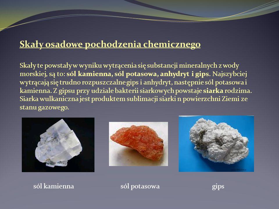 Skały osadowe pochodzenia chemicznego Skały te powstały w wyniku wytrącenia się substancji mineralnych z wody morskiej, są to: sól kamienna, sól potas