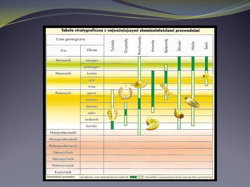 Metody badań wieku skał Metody określania wieku względnego skał: -Metoda stratygraficzna służy do określania wieku względnego skał na podstawie ich ułożenia (pod warunkiem, że ich układ nie był wcześniej zaburzony).