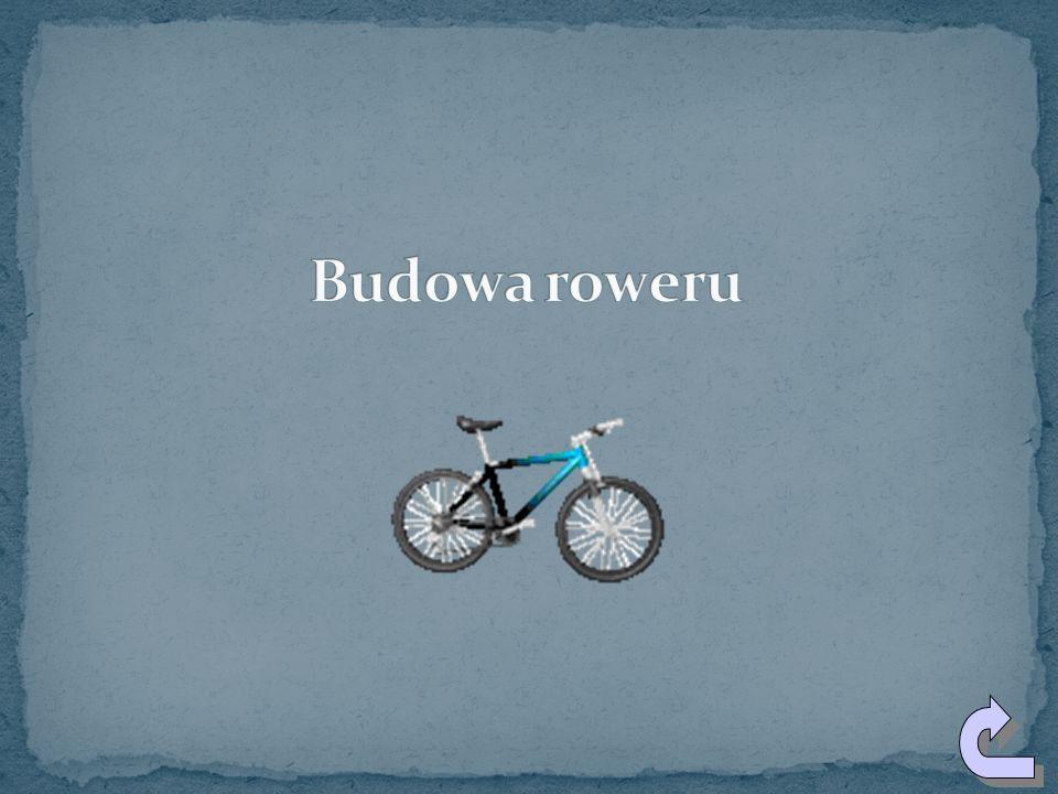 Pod koniec XIX w. Amerykanin THOMAS STEVENS dokonał jako pierwszy podróży na rowerze dookoła świata. Dokonał tego w ciągu 32 miesięcy, pokonując przy