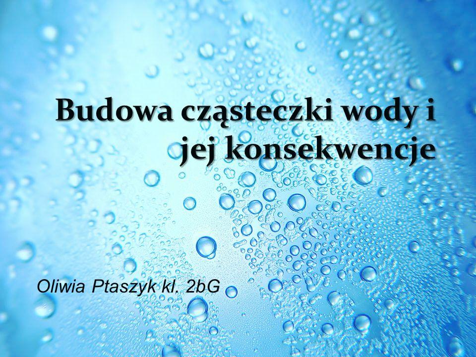 Oliwia Ptaszyk kl. 2bG