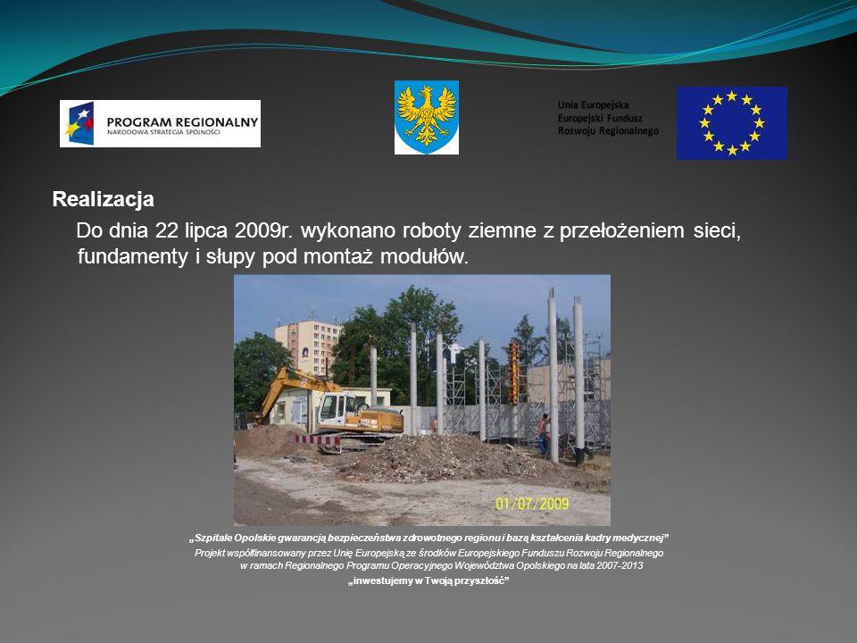 Realizacja Do dnia 22 lipca 2009r.